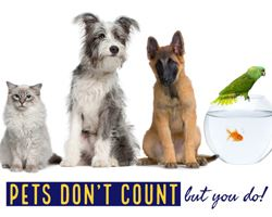 2020 Census: Pets don't count but you do!  (cat, dogs, goldfish, bird)
